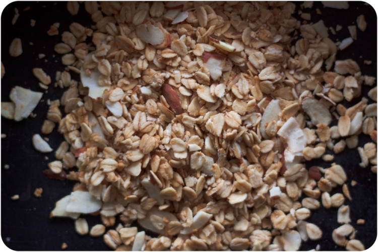 Mom's Granola (1 of 1)