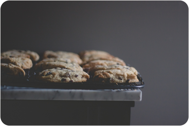 Petit Zesty Cranberry Scones-3
